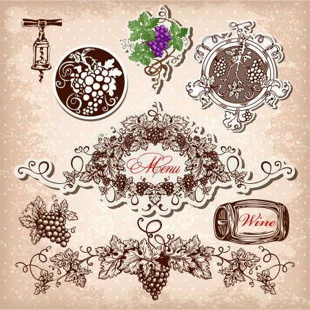 uvas: Dibujado a mano set de vino, la uva y elaboraci�n del vino. Vectores