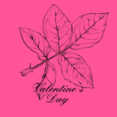 ornamental background: Valentines day design with rose flower. Vector illustration.