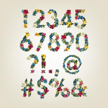 flower font: Numbers, Colorful Flower Font For Design.