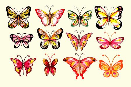 colores calidos: Mariposas de la acuarela fijadas. Dibujado a mano. Aislados. Los colores cálidos.