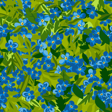 forgot: Floral seamless pattern background with forgot me not flower Illustration
