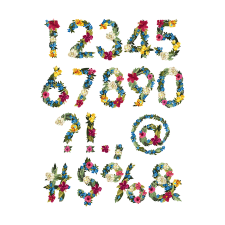 flower font: Numbers, Vector Colorful Flower Font For Your Design Vector illustration. Grotesque style. Floral alphabet. Numbers and punctuation marks.