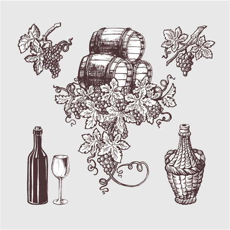 winemaking: Wine and winemaking vintage set. Wine template design. Vector illustration. Sketch style design. Red wine, white wine. Handdrawn grapes.