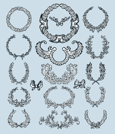 oak: Laurel wreath branches set. Decorative elements at engraving style. Illustration