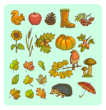 Fall symbols. Autumn icons and objects set for design with yellow golden leaves, pumpkin sunflower. Vector Illustration.