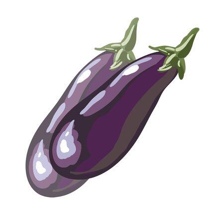 aubergine: fresh eggplant or aubergine vegetable in cartoon style. Vector Illustration