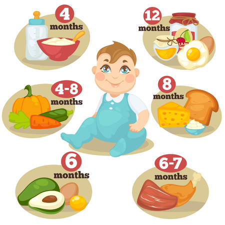 information  isolated: Healthy food for babies in different age. Information with healthy nutrition for child. Vector set with illustration. Cartoon infographic elements isolated on white background Illustration