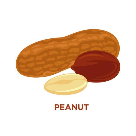 unpeeled: Vector illustration set of peanuts isolated cartoon composition Illustration
