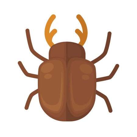 cockchafer. Icon of bright small insect with antenna. Cartoon vector illustration in flat style isolated on white background.
