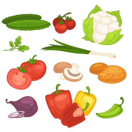 young leaves: Set of vegetables. illustration. Illustration