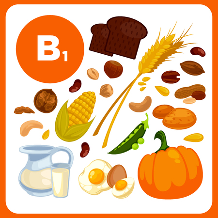 Collection food with vitamin B1. Illustration