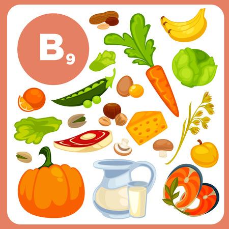 ácido: La vitamina B12, fuentes de ácido fólico.