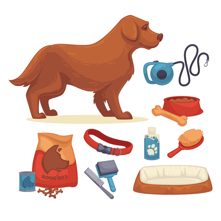 comb: Dogs Set of accessories for dogs.