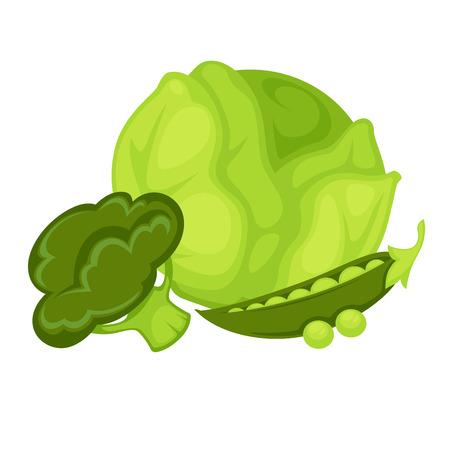 Green vegetables peas, broccoli, cabbage.