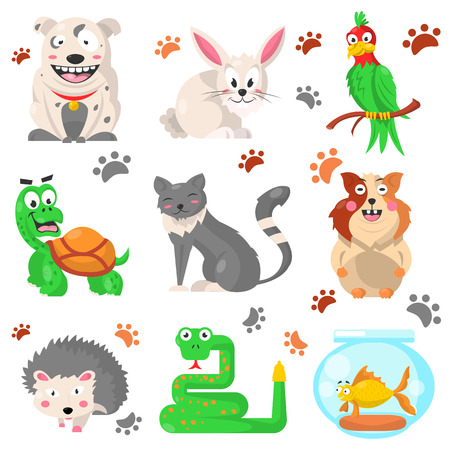 guinea pig: Cartoon pets colorful collection with their footprints on white Stock Photo