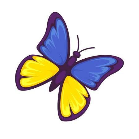 Butterfly in yellow and blue colors isolated on white background. Illustration