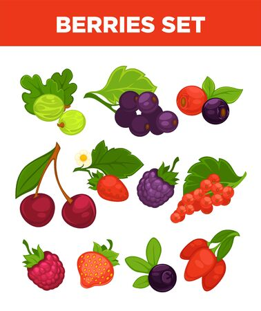 Berries vector isolated icons set Illustration