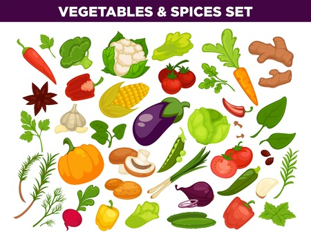 Vegetables and spices herbs isolated icons set