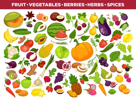Fruits, vegetables, berries and spices vector icons set