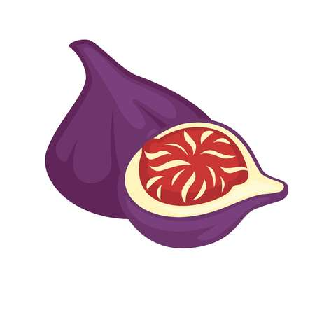 berry: Sandpaper fig whole and half isolated. Purple fresh ficus