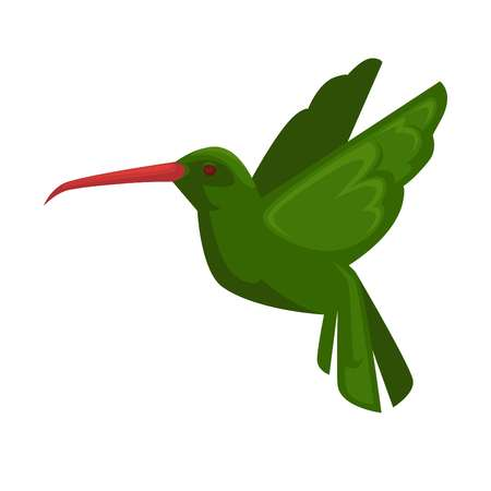 close icon: Green hummingbird icon in flying position isolated on white. Close up vector illustration of bird fly with straight wings, long beak and green feathers. Hummining flying animal in flat style. Illustration