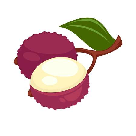 lichee: Lychee or lichee exotic tropical fruit flat isolated icon