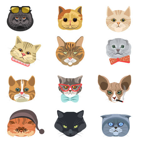 funny: Cartoon cats and hipster kittens face muzzles vector icons
