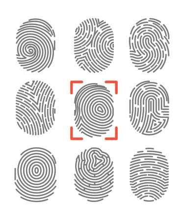 a police officer: Fingerprints or fingertip print identification vector icons set
