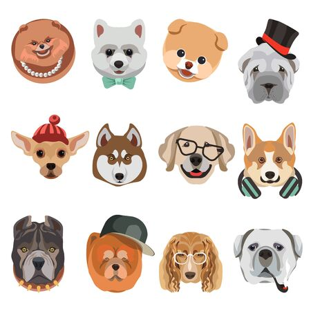 animal heads: Heads of different dog breed funny cute cartoon vector icons set. Illustration