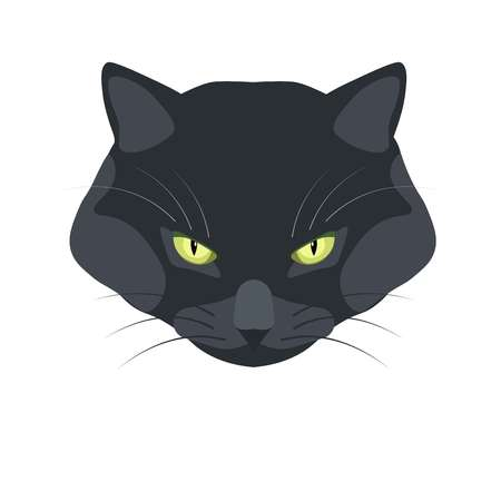 Bombay black cat breed close-up portrait on white Illustration