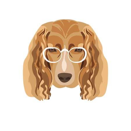 dog: Irish setter breed dog wearing transparent glasses with white frames.