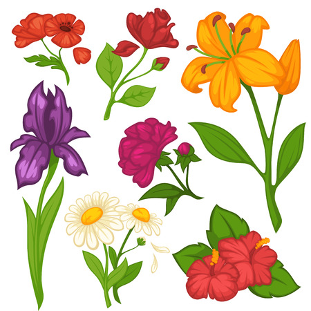 Flowers blooms vector flat isolated icons set