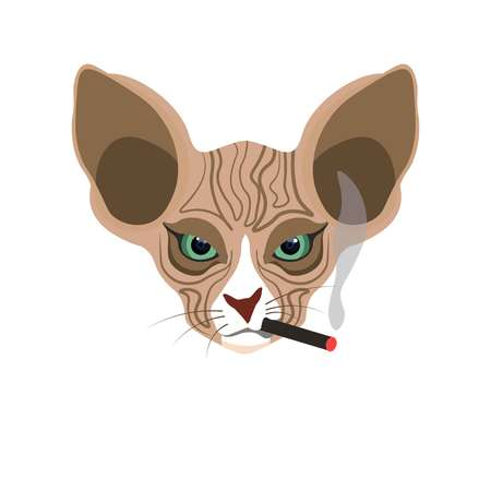contracted: Sphynx hairless cat face with cigarette isolated on white