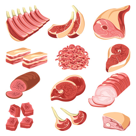 Fresh meat cuts colorful vector collection in flat design on white. Assortment poster of raw and cooked food of animal origin, pieces for barbecue, forcemeat pile, smoked or baked beef or pork. Vectores