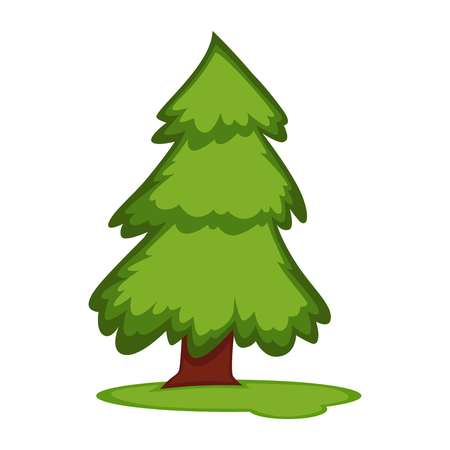 grass land: Tall fir tree on piece of grass land vector illustration isolated on white background. Fresh plant in clean environment concept. Pine sprute with greenery foliage in flat design cartoon style