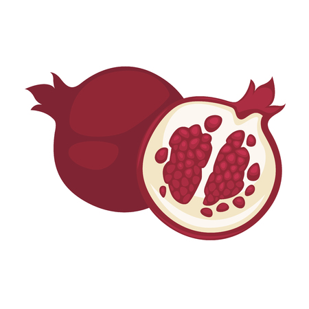 sliced fruit: Pomegranate fruit vector isolated flat icon whole and cut sliced