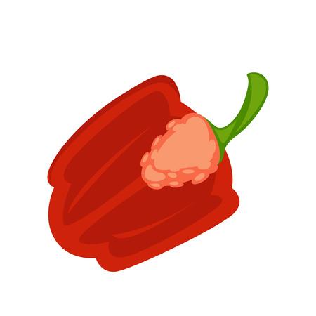 Vector illustration of the fresh halved pepper on the white background. Illustration