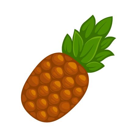 Fresh whole pineapple Illustration