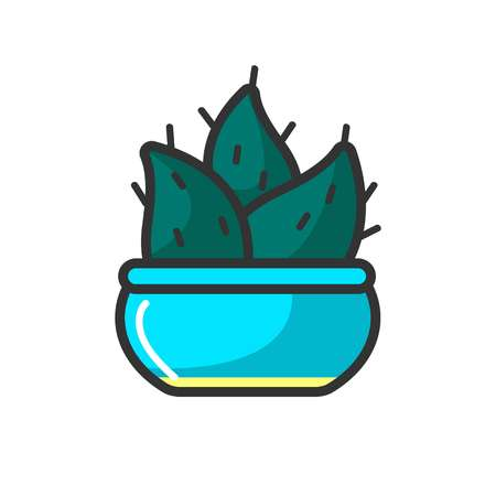 Small cactus in blue pot