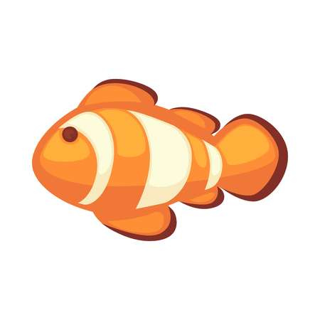 Clownfish or anemonefish vector illustration isolated on white background Illustration