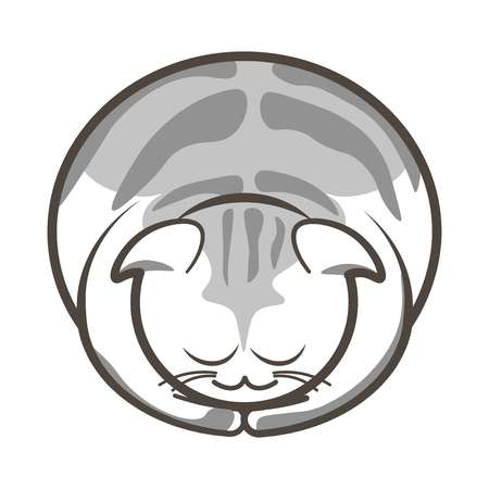 domestic cat: Vector illustration of gray colored cute sleepy cat on the white background.