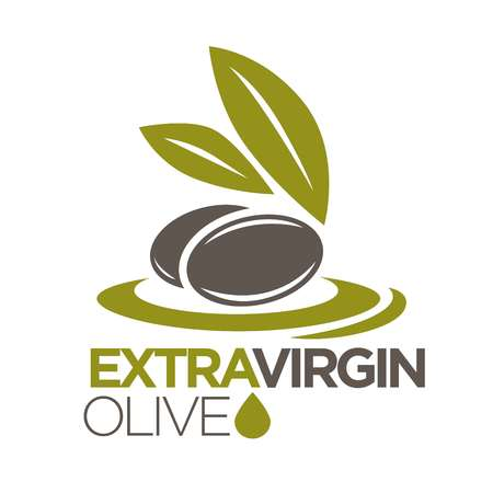 olive green: Extra virgin olive oil logo design vector illustration of company label with black olives berries with leaves. Healthy condiment template with sticker of berry ingredient flat logotype on white.