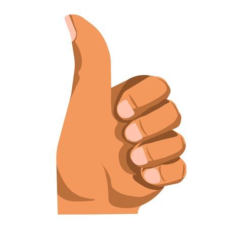hand: Hand gesturing thumb up