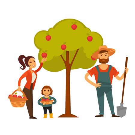 People gather fruit harvest vector farm agriculture Illustration