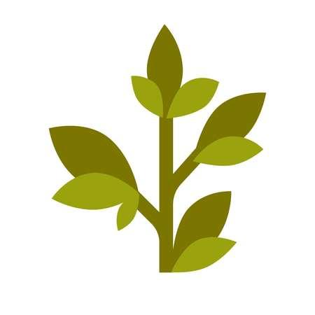 Green tea grown plant flat cartoon isolated illustration