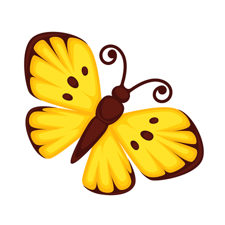 Yellow butterfly with sports on wings and with curved brown antennas isolated on white. Vector colorful illustration of small flying monarch creature with open wings, migratory insect butterflies