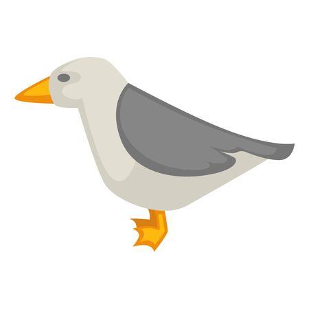 Seagull isolated on white Illustration
