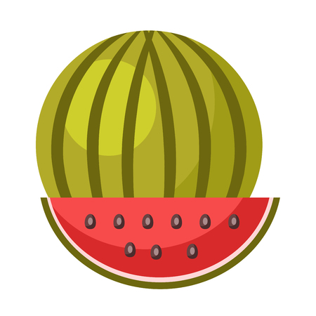Whole ripe watermelon and small slice isolated illustration