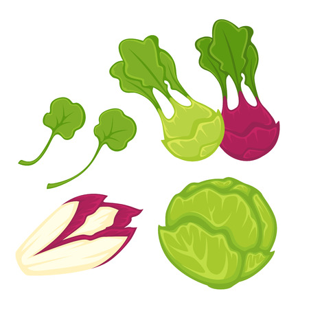 Healthy greens and vegetables isolated cartoon illustrations set