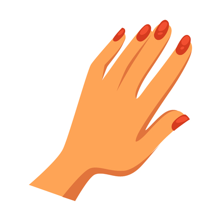 Womans feminine hand with shiny glossy neat red manicure isolated flat cartoon vector illustration on white background. Modern professional beauty procedure for nails health and elegant look. Illustration